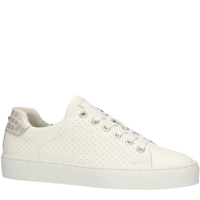 Sneaker White 962065E5L_WHSLTD