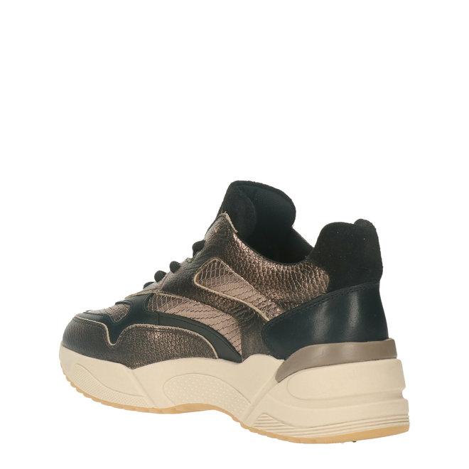 Sneaker Champaign 750000E5L_CHAMTD