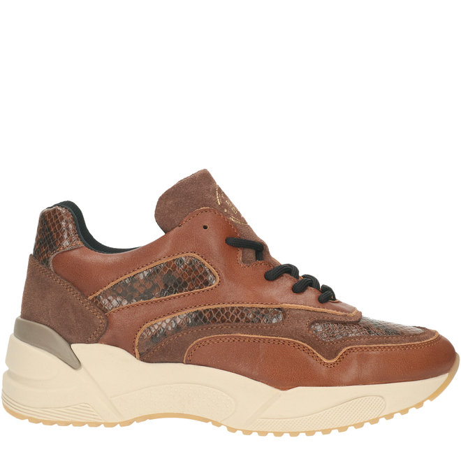 Sneakers Cognac 750000E5C_MSTGTD