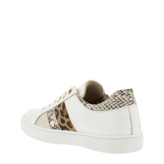 Sneaker White with Panter- en Snakeprint AHM031E5L_WONTKB