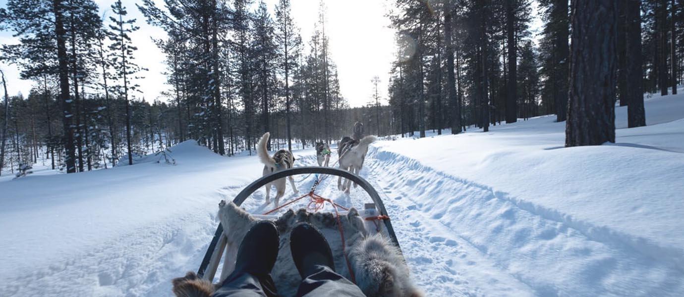 Husky slee