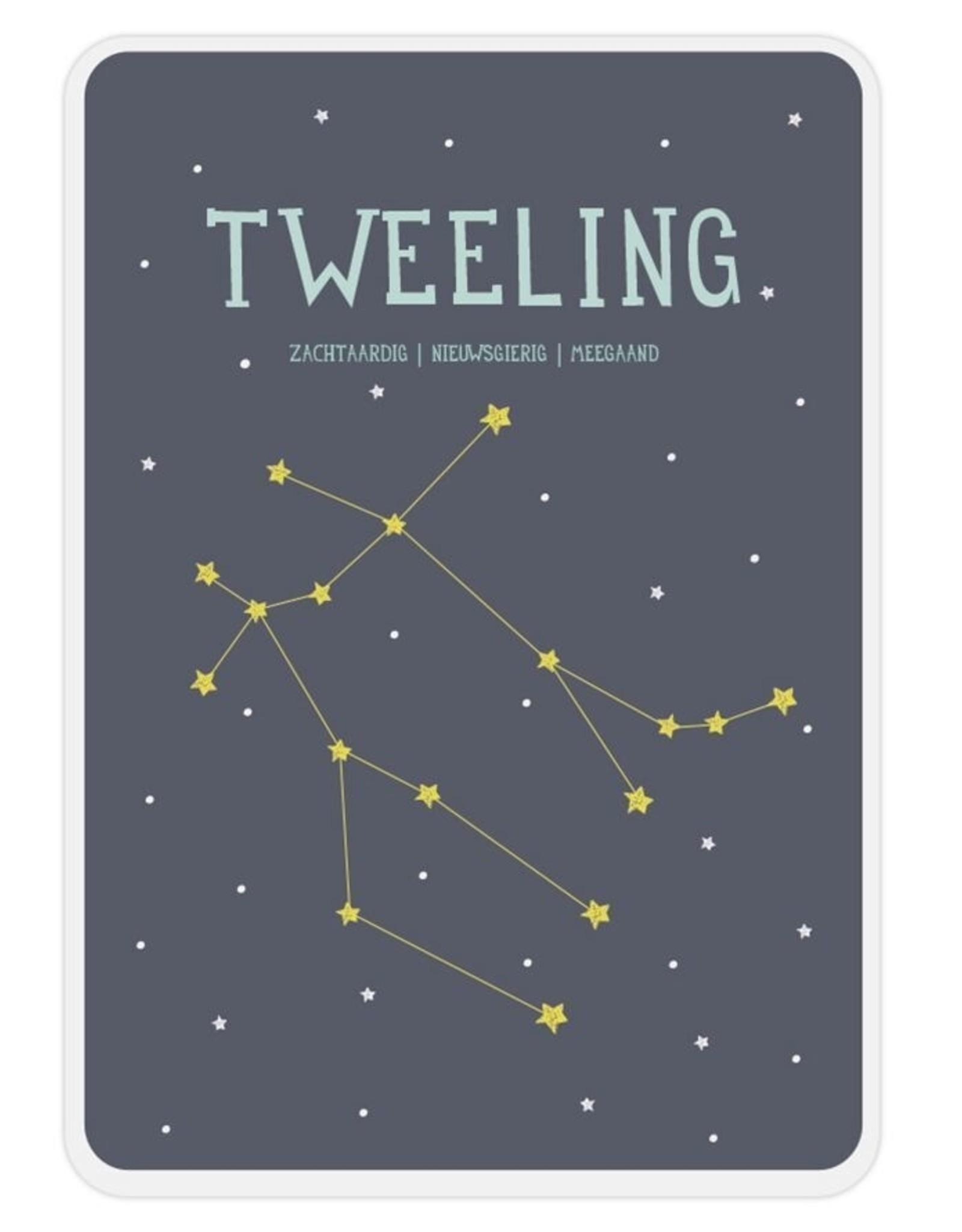 Milestone Milestone - Poster Tweeling
