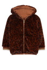 Ammehoela Jas - Lola Brown Leopard