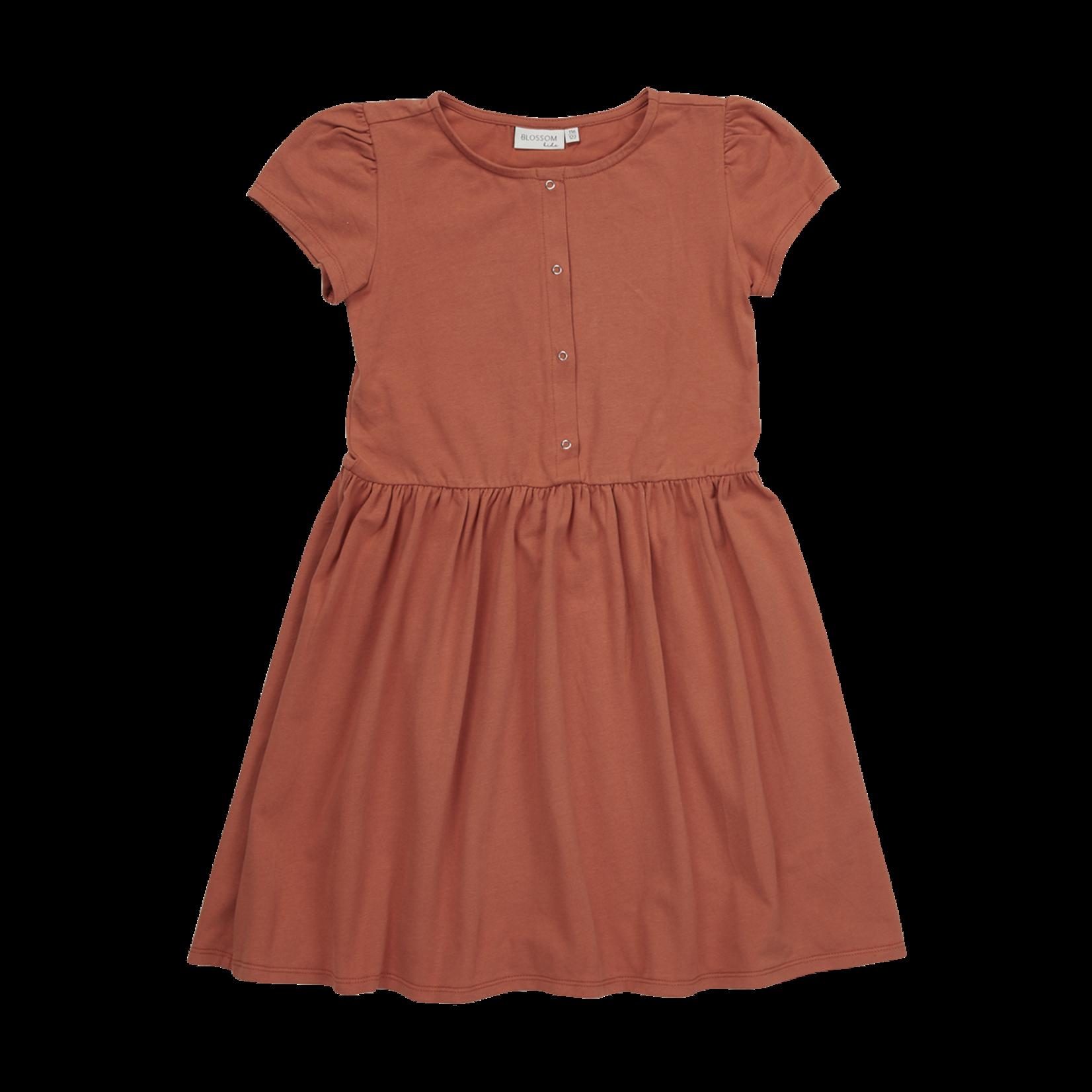 Blossom Kids BK - Dress - Dusty Coral
