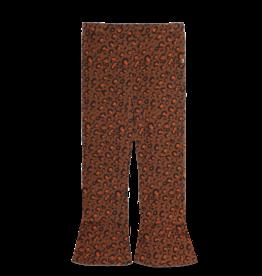 Ammehoela AM-Loua-01-Leopard