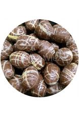 Paaseitjes Deco - Melk - Crunchy praliné