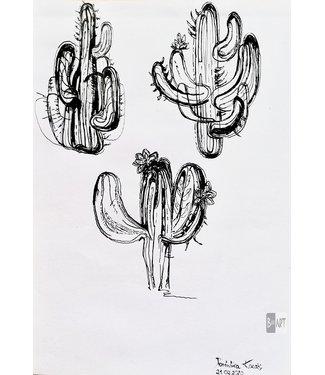 Dominika Kozak De cactussen