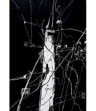 Dominika Kozak Het electrische veld