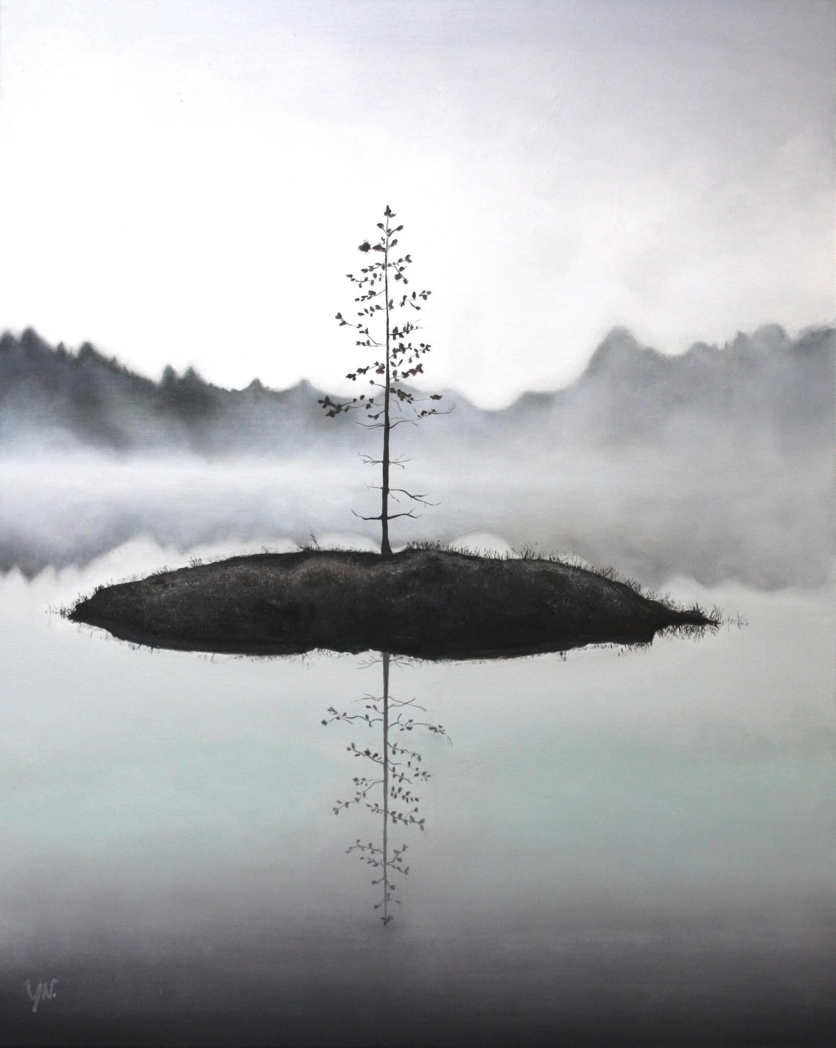 Yvet Noordermeer | Misty Woods