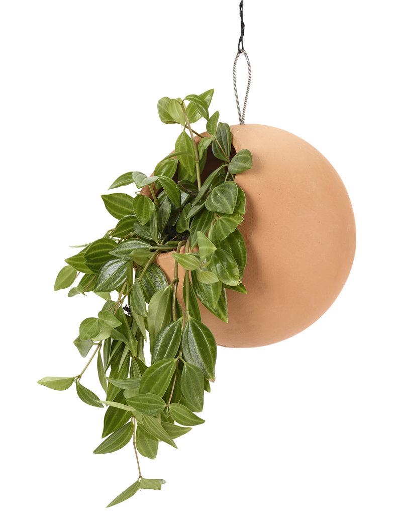 SERAX Hanging Pot - Terra Cotta (M)