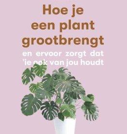 Luster Hoe je een plant grootbrengt [nl]