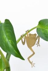 another studio Golden plant hanger - Frog