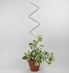 Botanopia Golden Plant Stake - Zigzag