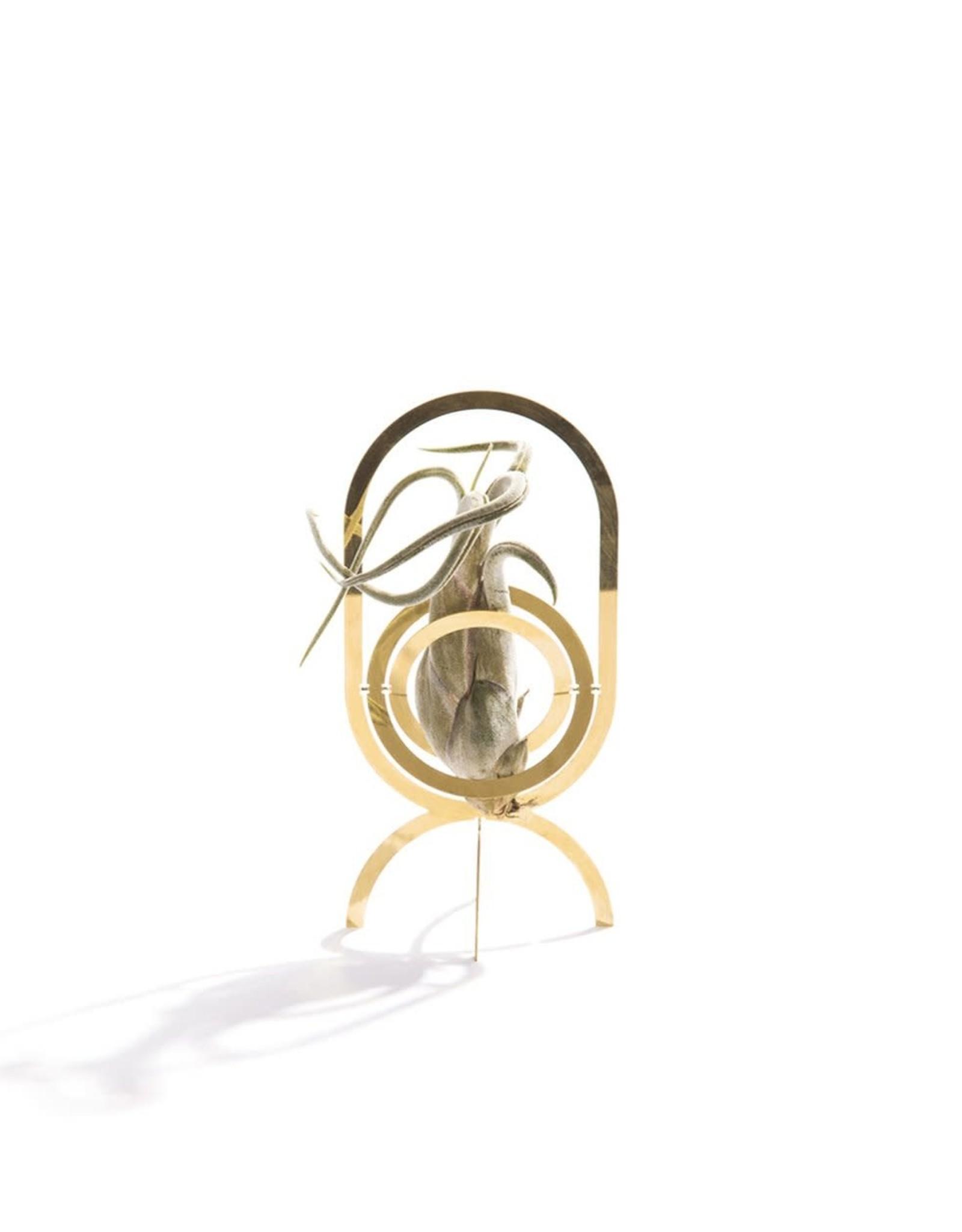 Fundamental Berlin Plant holder: Air Trophy