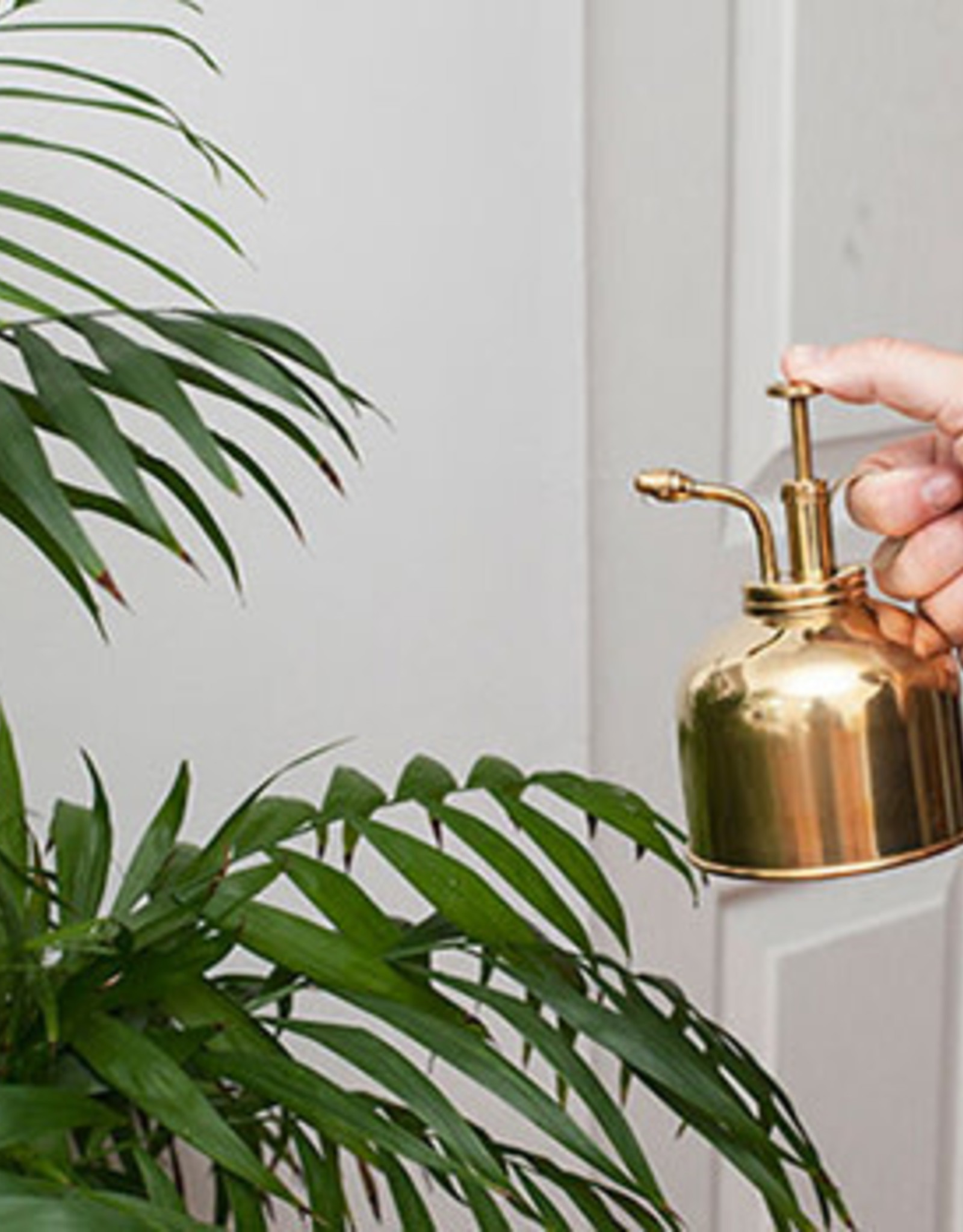 Kikkerland Plant sprayer Gold 300ml