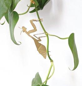 another studio Golden plant hanger - Praying Mantis