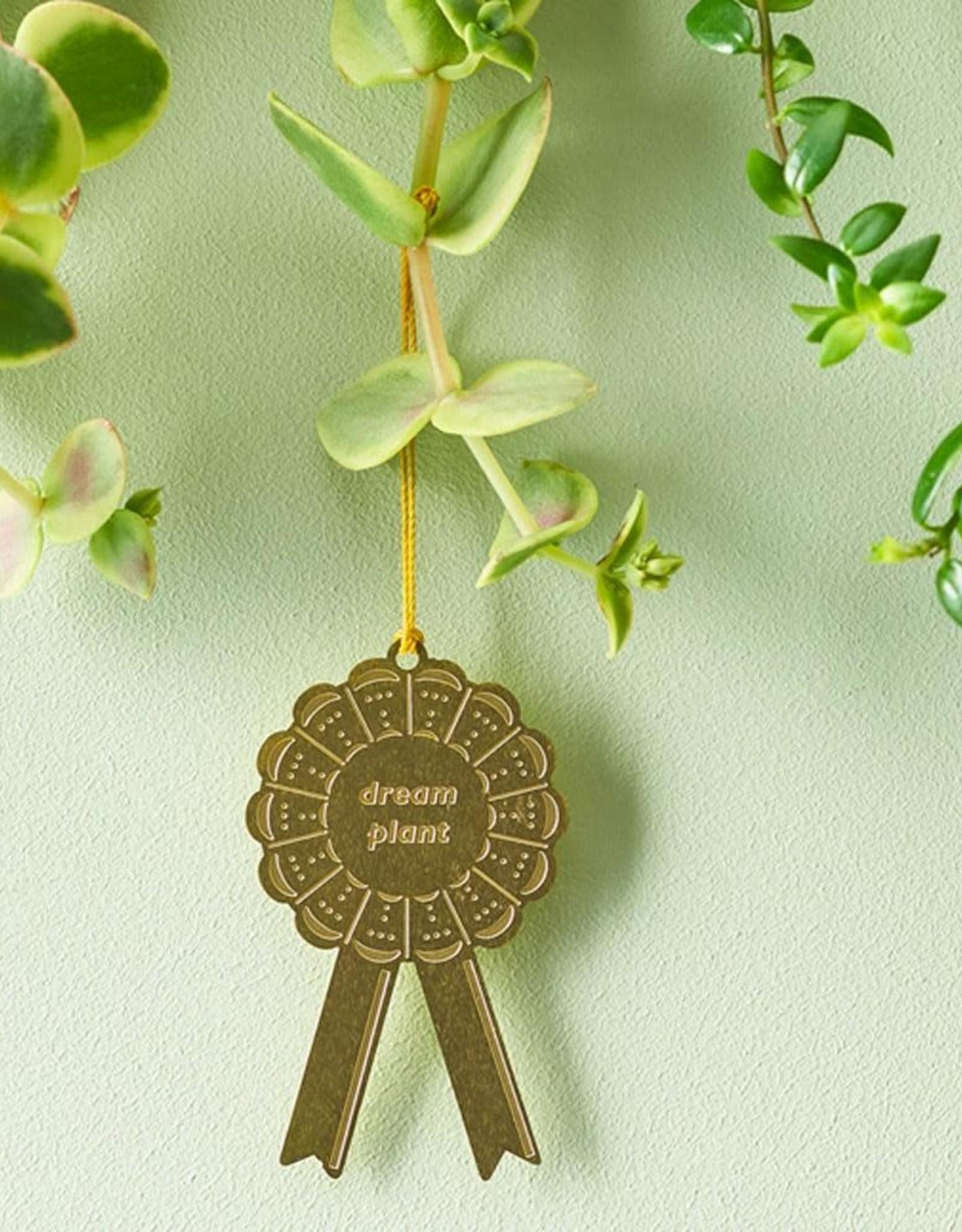 another studio Plant Awards Dream Plant