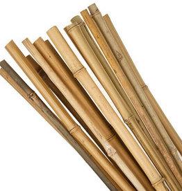 GRUUN Bamboo Stick +-100cm