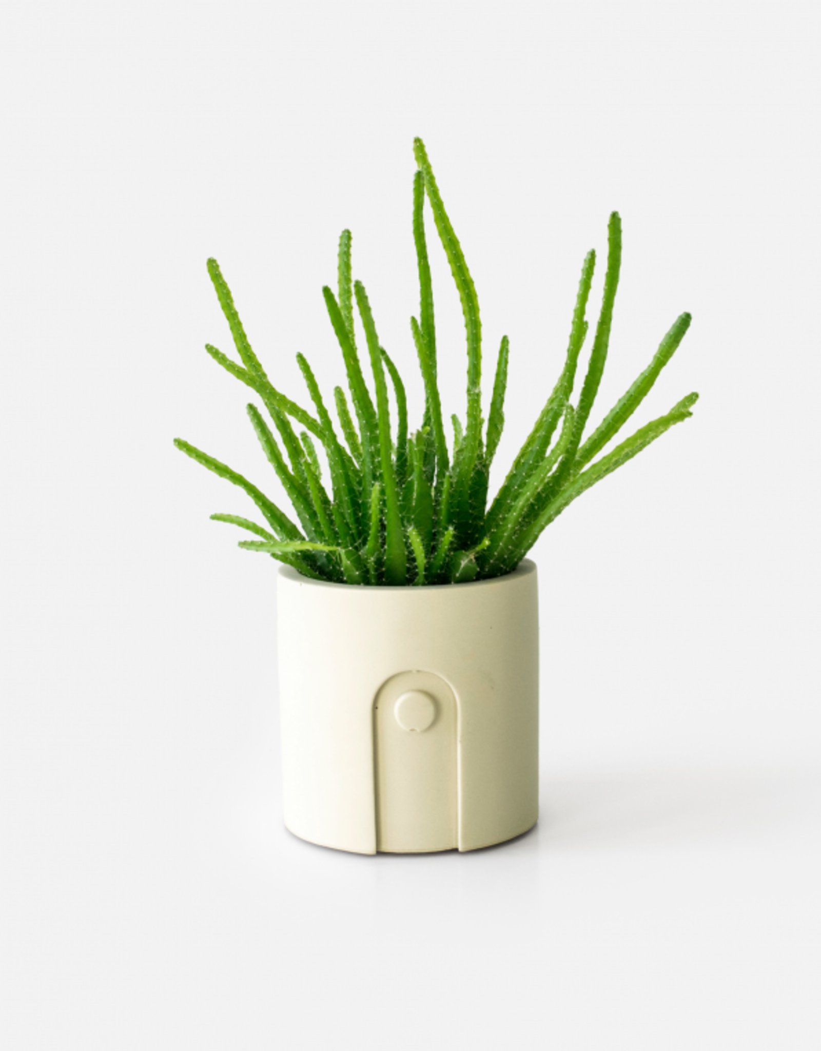 House Raccoon Emilia Planter - Sandy Beige Ø 6 cm