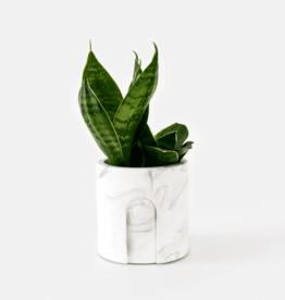 House Raccoon Emilia Planter - White Marble Ø 6 cm