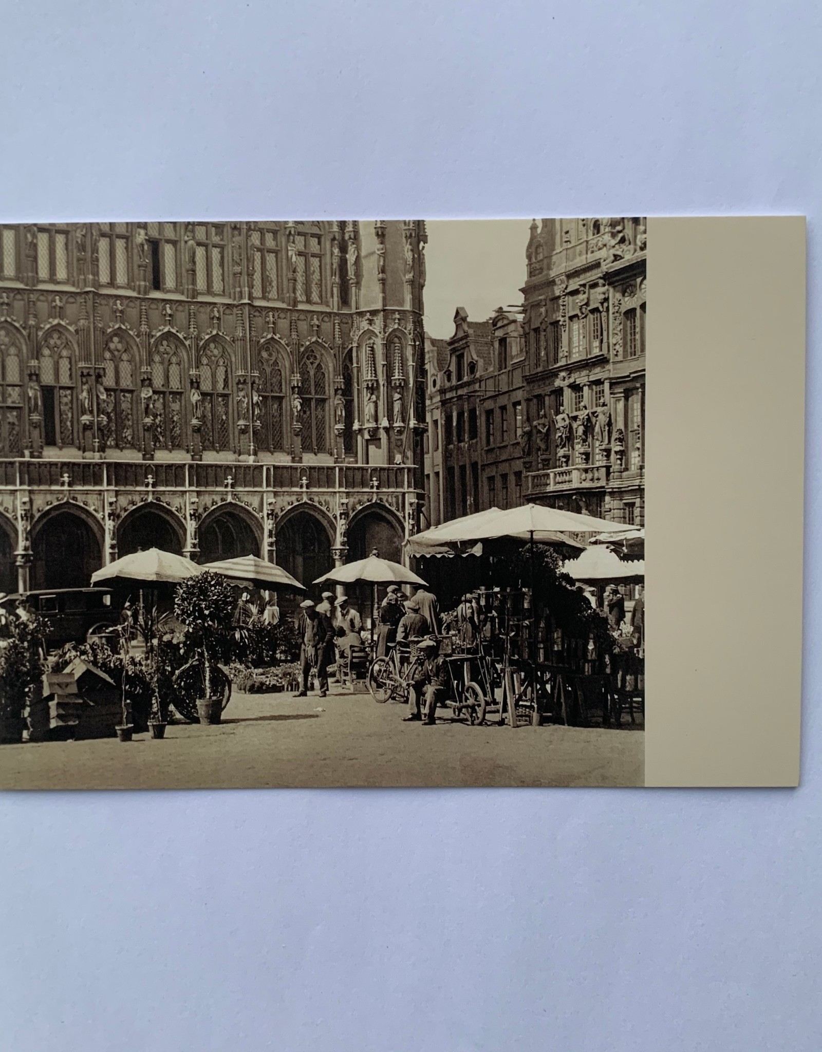 Plaizier Flower market at the Grand Place, Brussels