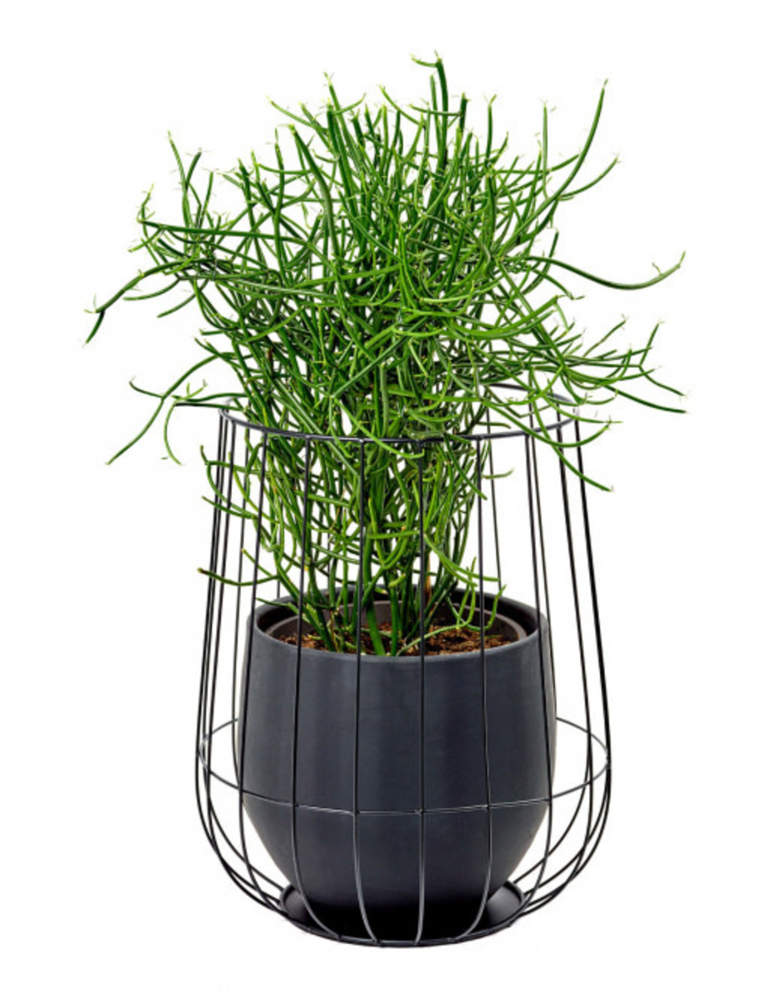 serax Pot in cage ∅37 - Black