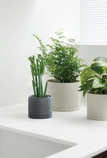 Kinto Plant Pot 191  ∅10,5 (dark gray)