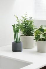 Kinto Plant Pot 191  ∅13,5  (dark gray)