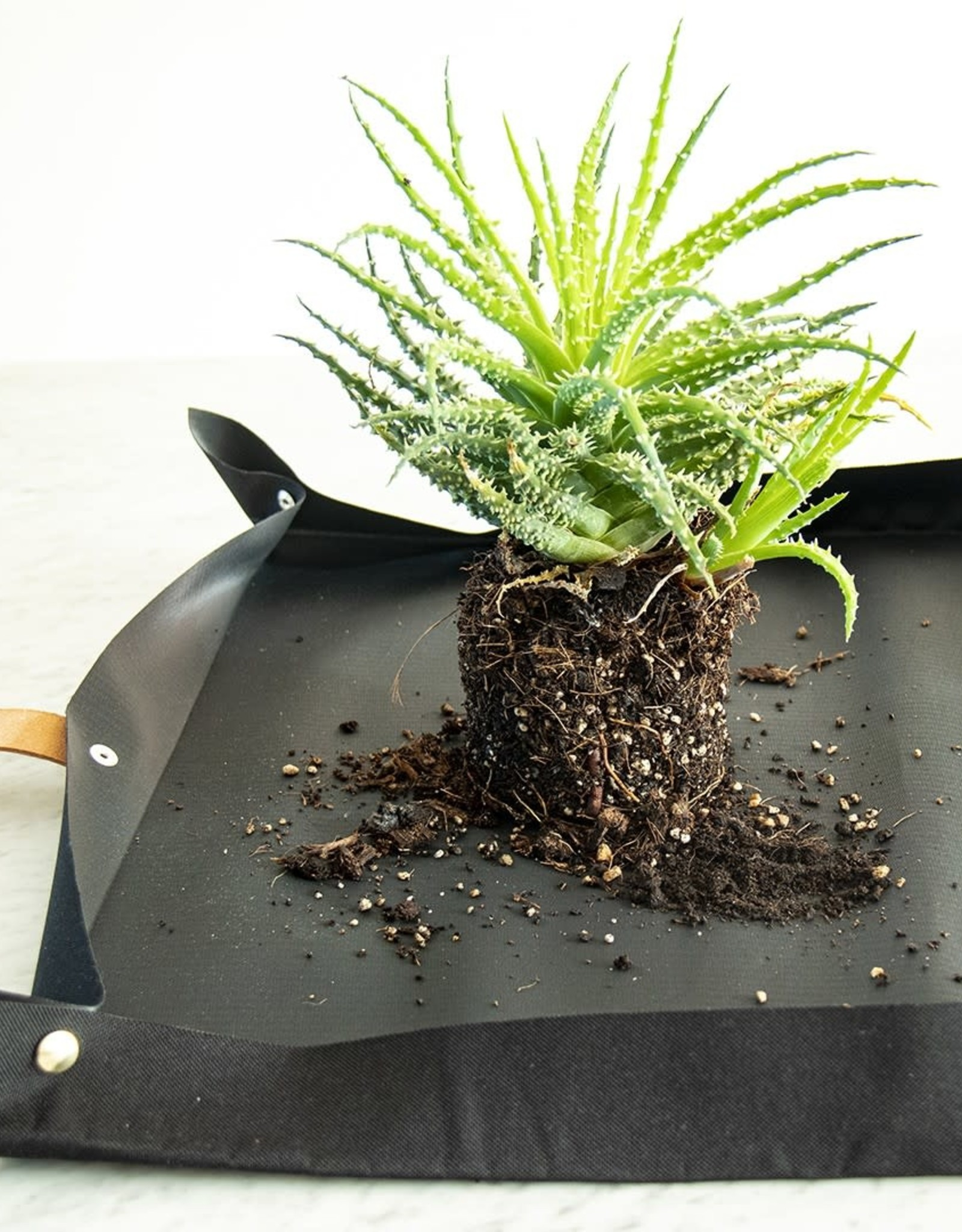 Botanopia Potting tarp for urban gardening