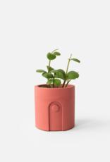 House Raccoon Emilia Planter - Pomegranate Ø 6 cm