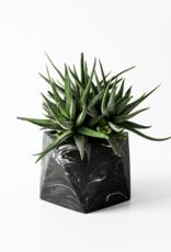 House Raccoon Mare Planter - Large - Black Marble Ø 8,5 cm