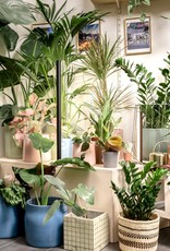 Mother Life PlantSpectrum32 - Growlight - standing