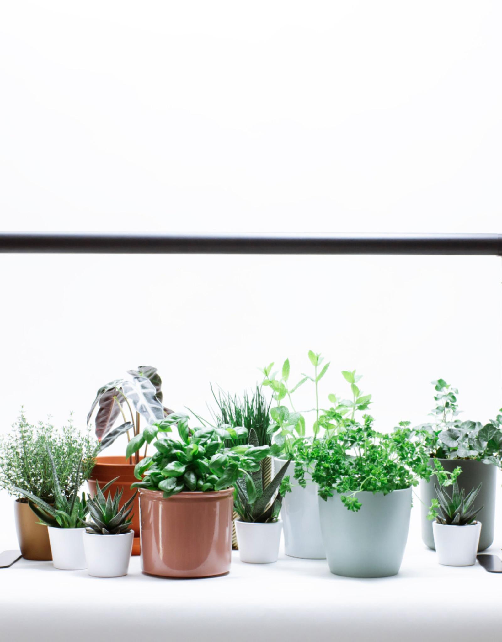 Mother Life PlantSpectrum32 - Growlight - horizontal