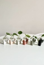 House Raccoon June Propagation Station - Olive Green