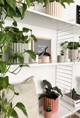 House Raccoon Mila Planter - Small - Olive Green Ø 6 cm