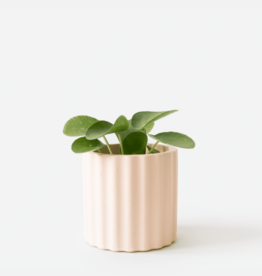House Raccoon Mila Planter - Small - Millennial Pink Ø 6 cm