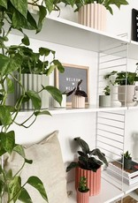 House Raccoon Mila Planter - Small - Millennial Roze Ø 6 cm