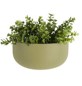 GRUUN Wall Pot Oval Olive Green 10 x 10.8 x 9.5 cm