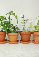 Botanopia Zwarte mini plantensteun - Pompom