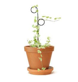 Botanopia Tuteur pour plantes noir Mini - Perch