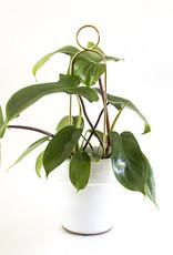 Botanopia Golden Plant Stake Mini - Pompom