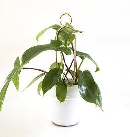 Botanopia Tuteur pour plantes or Mini - Pompom