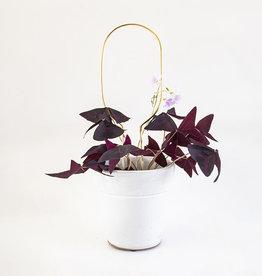 Botanopia Tuteur pour plantes or Mini - Cercle