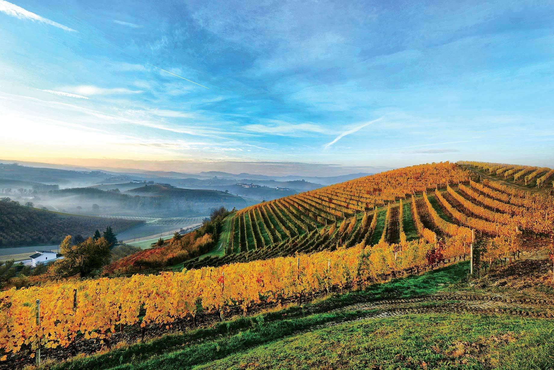 A Michelin Starred Winemaker Dinner at Maison Belge
