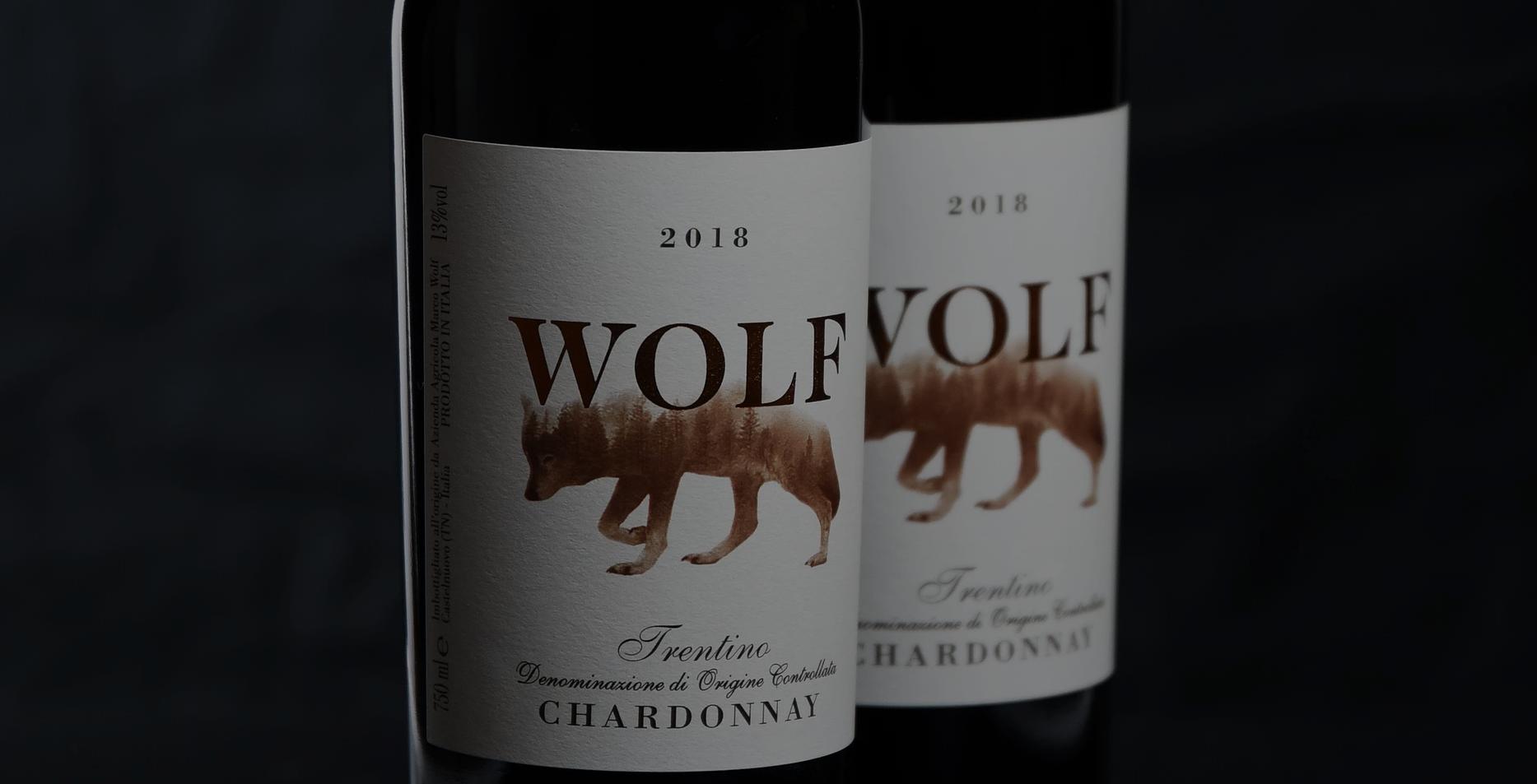 Wijnstokken, zelfs in Valsugana kun je hoge kwaliteit maken ... Marco Wolf