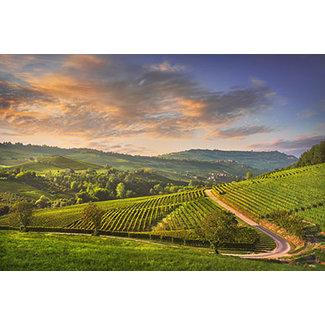 Proef Piemonte ( wit )