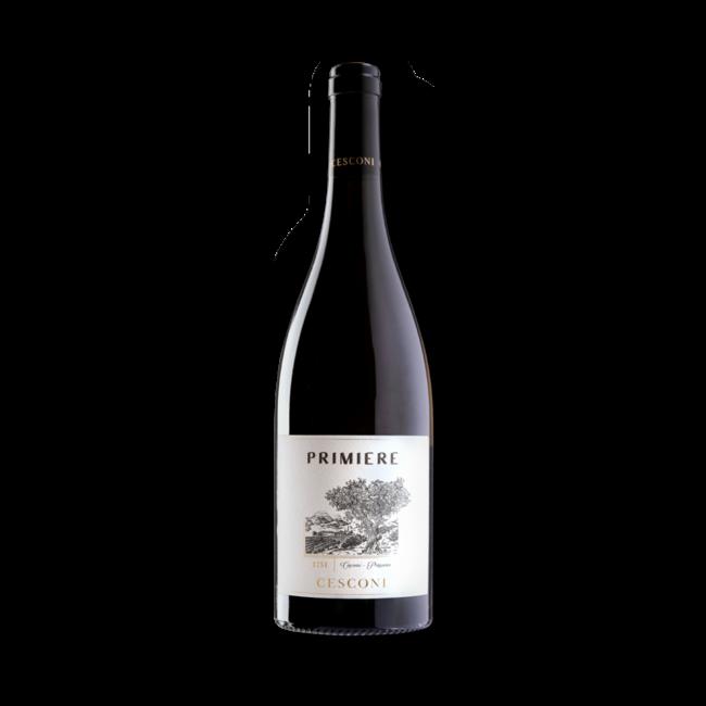Cesconi - Primiere Pinot Grigio Riserva 2018