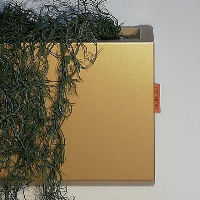 Muur plantenbakken