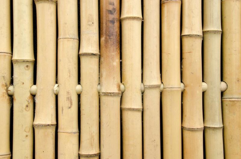 Bamboeschuttingen