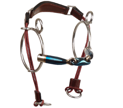 Curb Gag double jointed - elliptical